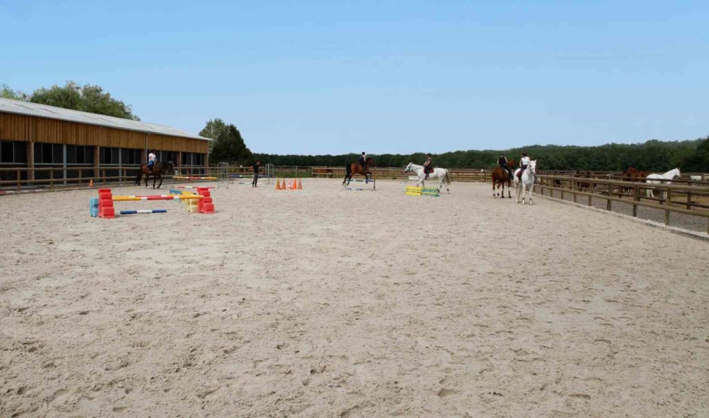 teambuilding cheval