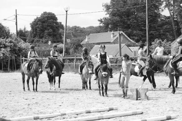 cours équitation collectif