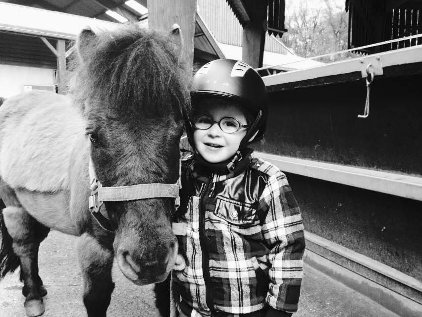 cours équitation débutant